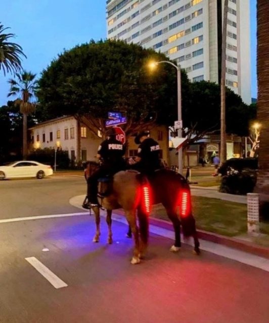 Dallas Police Glowing Horse Tails