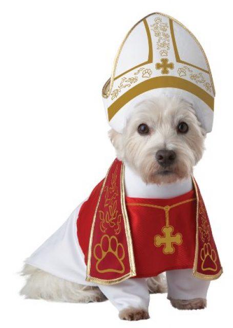 Dog-Costume-5